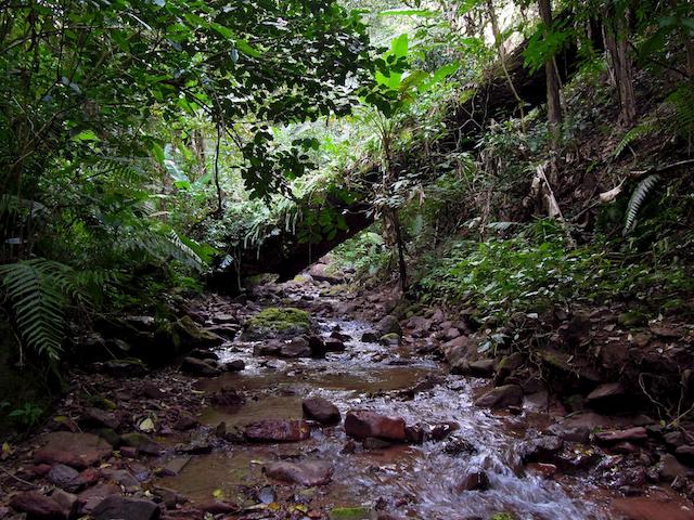 suivre le ruisseau
