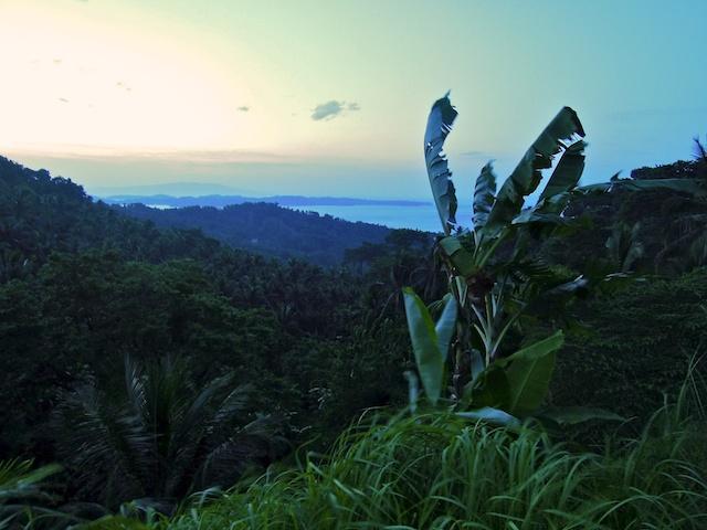 Vue sur Puerto Galera